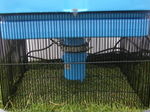 Wire Mesh Protection Grid